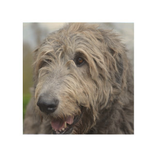 Wolfhound Wood Canvases
