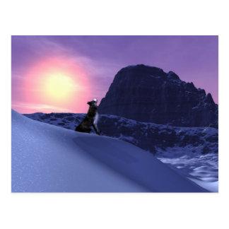 wolfsong postcard