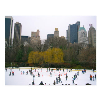 Wollman Ice Rink Central Park NYC New York City Postcard