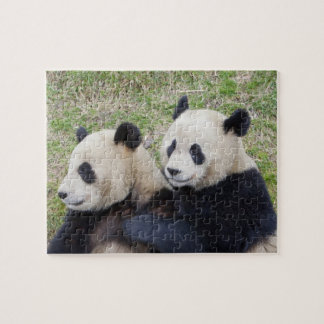 Wolong Reserve, China, Giant panda hugging Jigsaw Puzzle