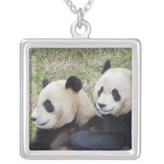 Wolong Reserve, China, Giant panda hugging Square Pendant Necklace