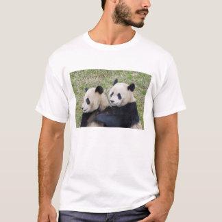 Wolong Reserve, China, Giant panda hugging T-Shirt