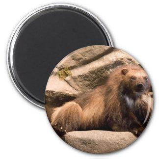 Wolverine 6 Cm Round Magnet