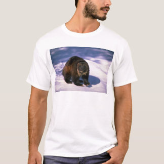 Wolverine on snow T-Shirt