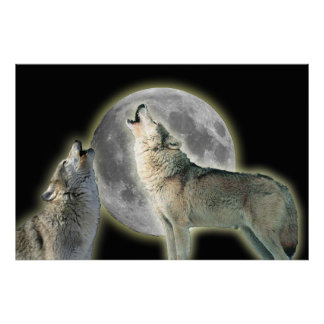 Wolves Howling at Moon Canvas Print
