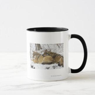 Wolves in the Bawarian Wood Mug