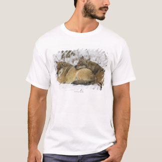 Wolves in the Bawarian Wood T-Shirt