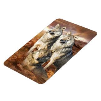 Wolves Trio Premium Magnet 4x6