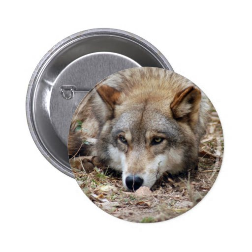 Wolves Wolf Button