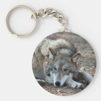 Wolves Wolf Keychain