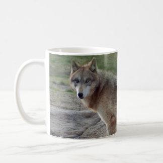 Wolves Wolf Mug