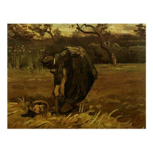 Woman Digging Up Potatoes, Vincent van Gogh Postcards
