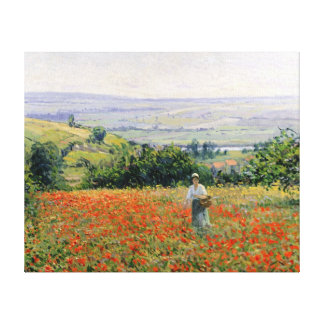 Woman in a Poppy Field Canvas Print