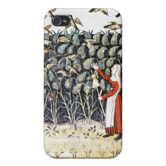Woman Protecting her Crop of Millet iPhone 4/4S Case