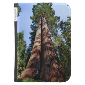 Woman videotaping at base of massive Sequoia Kindle Case