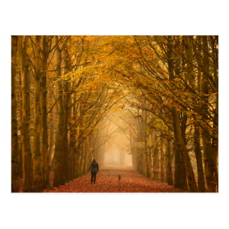 Woman walking with her dog in fall postcard
