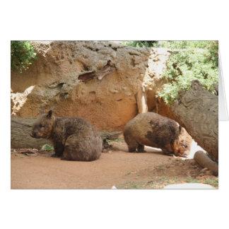 Wombat Heaven Card