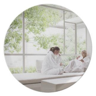 Women drinking tea in window plate