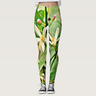 """Women's """"Apple Tree Blossoms"""" Leggings"""