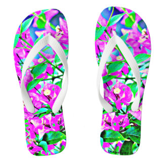 Women's Purple/Pink Flip Flops