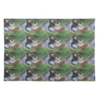 Women's trendy fairy village cloth place mat