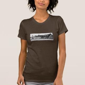 Women's walking plow shirt