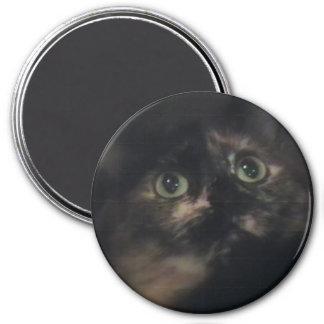 wonder 7.5 cm round magnet