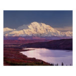 Wonder Lake and Mt. Denali at sunrise in the Poster