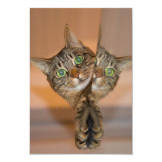 Wonderful Cat 9 Cm X 13 Cm Invitation Card