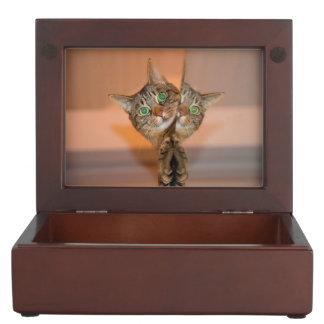 Wonderful Cat Keepsake Boxes