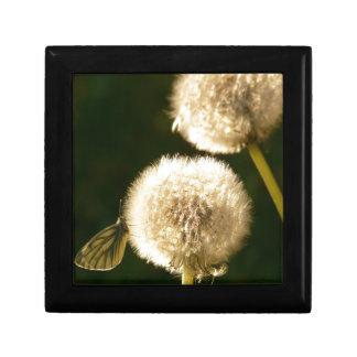 Wonderful Dandelion Trinket Boxes