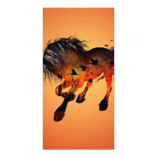Wonderful horse photo greeting card