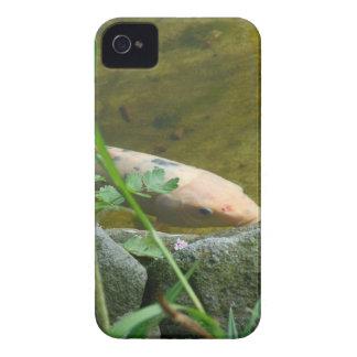 Wonderful Koi iPhone 4 Case-Mate Cases