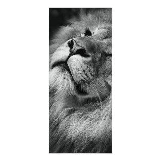 Wonderful Lion 10 Cm X 24 Cm Invitation Card