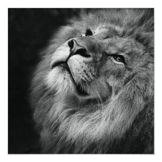 Wonderful Lion 13 Cm X 13 Cm Square Invitation Card