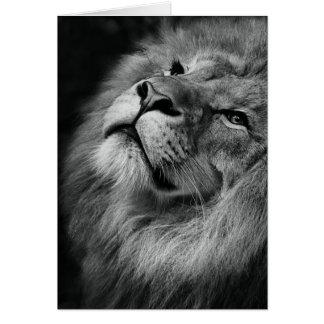 Wonderful Lion Greeting Card