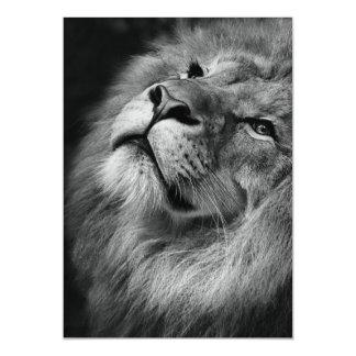 Wonderful Lion Magnetic Invitations