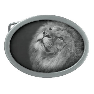 Wonderful Lion Oval Belt Buckles