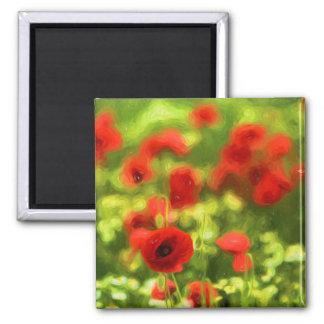 Wonderful poppy flowers VI - Wundervolle Mohnblume Square Magnet