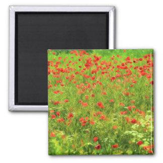 Wonderful poppy flowers VII - Wundervolle Mohnblum Square Magnet