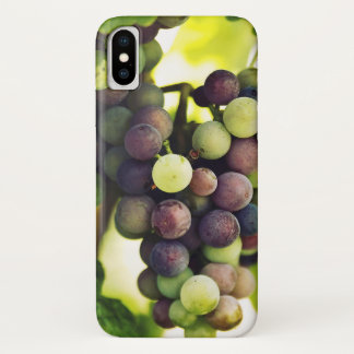 Wonderful Vine Grapes,  Autumn Fall Sun iPhone X Case