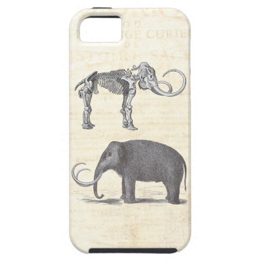 Wonderfully Strange Woolly Mammoth Skeleton Unique iPhone 5 Covers