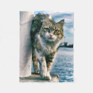 Wondering Beautiful Cat Fleece Blanket