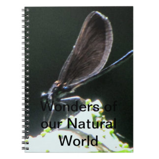 Wonders of our Natural World Notebook