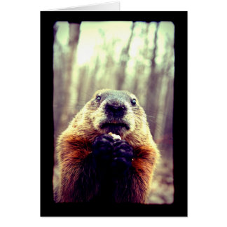 Wonky Marmot Greeting Card
