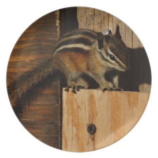 wood and chipmunk party plate