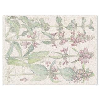 Wood Betony Wildflower Flowers Tissue Paper