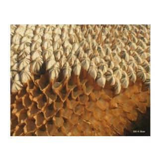 Wood Canvas - Sunflower Seeds
