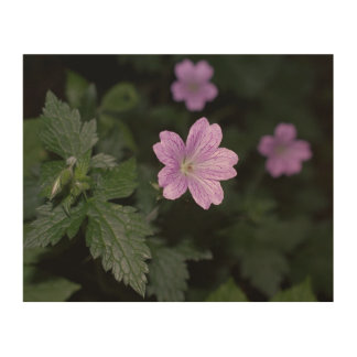Wood Cranesbill Wood Wall Decor