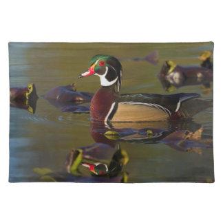 Wood Duck Drake 1 Placemat